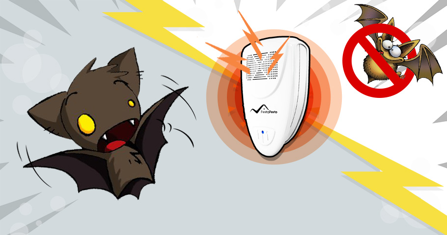 How To Get Rid Of Bats In The Attic In Less Than 72 Hours